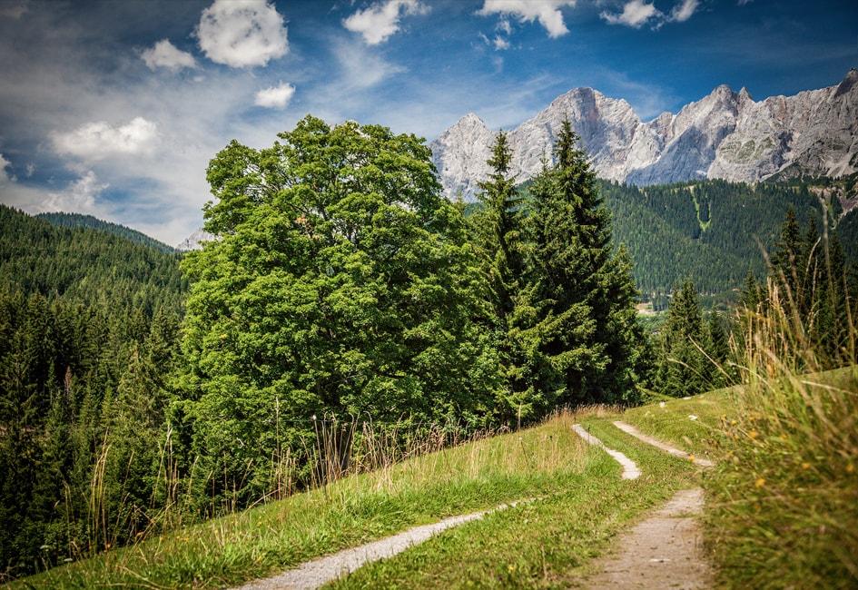 Wandern in Ramau am Dachstein